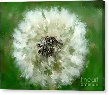 Pursuit Of Happiness Canvas Print by Holley Jacobs
