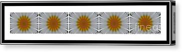 Pushing Up Daisies - Kaleidoscope - Pentaptych Canvas Print by Barbara Griffin