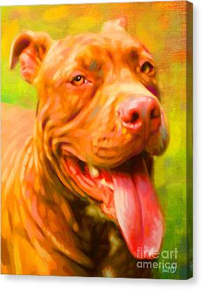 Pit Bull Portrait Canvas Print by Iain McDonald