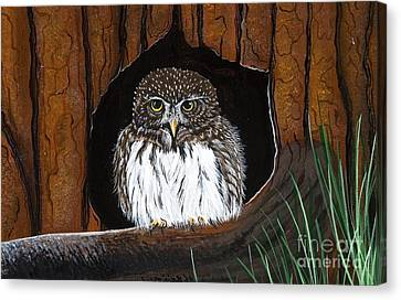 Canvas Print featuring the painting Pygmy Owl by Jennifer Lake