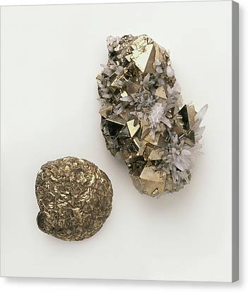 Pyrite Canvas Print - Pyrite Interspersed With Quartz by Dorling Kindersley/uig