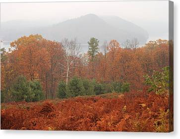 Quabbin Reservoir Late Autumn Oak And Fern Foliage Canvas Print