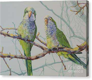 Quaker Chat Canvas Print by Sandra Williams