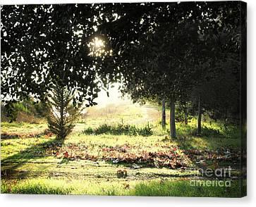 Canvas Print featuring the photograph Quarry Lakes Sunrise by Ellen Cotton