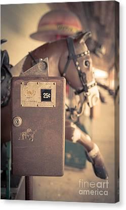 Quarter Horse Canvas Print by Edward Fielding