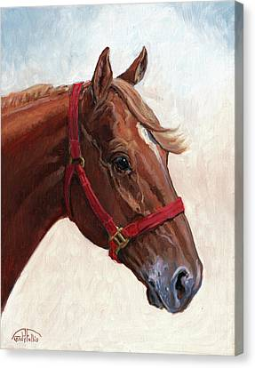 Quarter Horse Canvas Print by Randy Follis