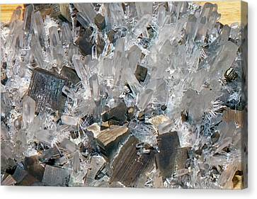 Pyrite Canvas Print - Quartz And Pyrite by Dirk Wiersma