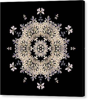 Queen Anne's Lace Flower Mandala Canvas Print by David J Bookbinder
