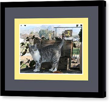 Canvas Print - Queen Kitty by Marsha Ingrao