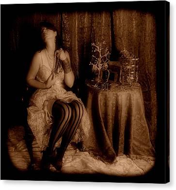 Queen Midas Canvas Print by Cindy Nunn