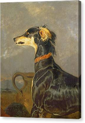 Growling Canvas Print - Queen Victorias Favourite Dog, Eos by Sir Edwin Landseer