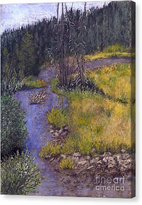 Quiet Creek Canvas Print by Ginny Neece