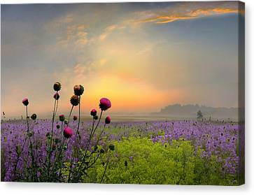 Quiet Evening Canvas Print by Igor Zenin