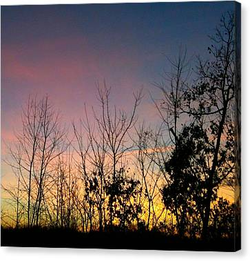 Canvas Print featuring the photograph Quiet Evening by Linda Bailey