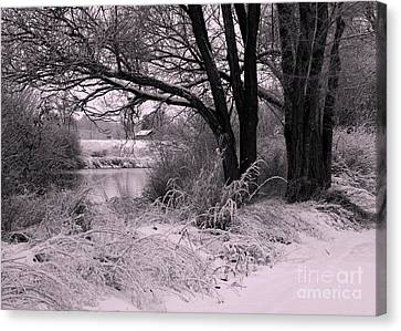 Quiet Morning After Snowfall Canvas Print by Carol Groenen