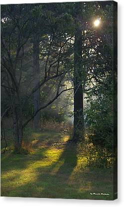 Canvas Print featuring the photograph Quiet Morning by Tannis  Baldwin