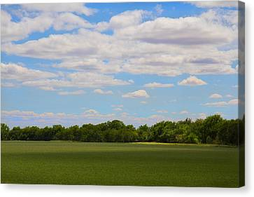 Quiet Pastoral Canvas Print