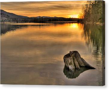 Quiet Times  Canvas Print by Peter Mooyman