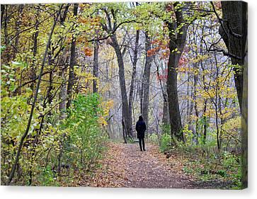 Quiet Walk In The Woods Canvas Print