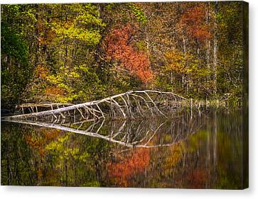 Quiet Waters In Autumn Canvas Print by Debra and Dave Vanderlaan