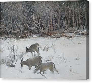 Quiet Winter Day  Canvas Print