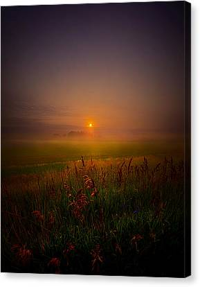 Quietly Canvas Print by Phil Koch