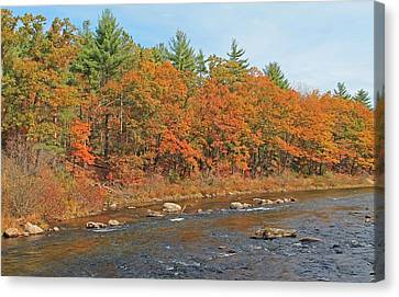 Quinapoxet River In Autumn Canvas Print