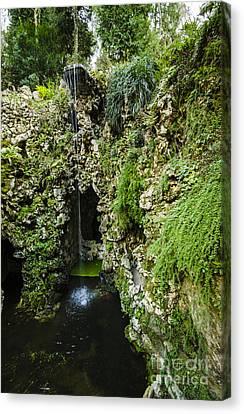 Quinta Da Regaleira Grotto Canvas Print by Deborah Smolinske