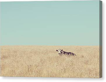 Quite Happy Where She Was Canvas Print by Takeshi Okada