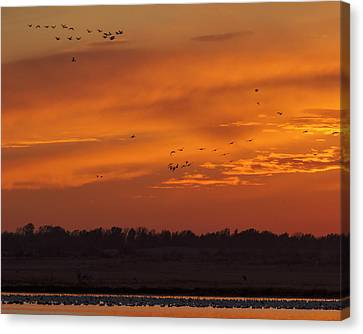Canvas Print featuring the photograph Quivira Sunset 1 by Rob Graham