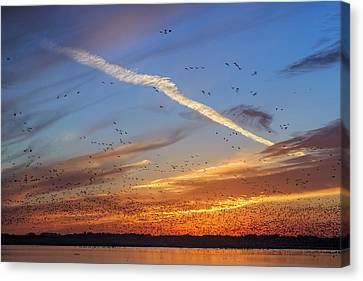 Canvas Print featuring the photograph Quivira Sunset 2 by Rob Graham