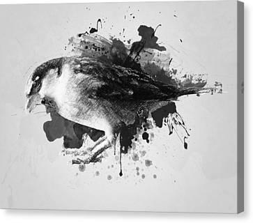 Qush Canvas Print by Taylan Apukovska