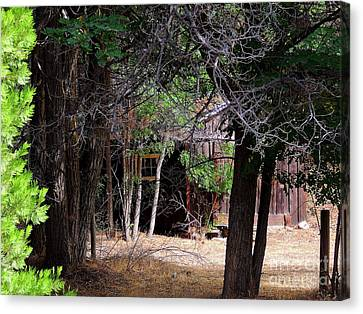 Brown Ranch Trail Canvas Print - R-ranch Shack by Vicki Buckler