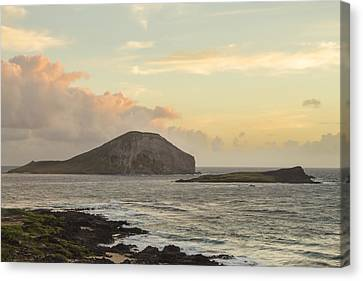 Canvas Print featuring the photograph Rabbit And Turtle Island At Sunrise 1 by Leigh Anne Meeks