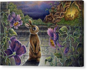 Rabbit Dreams Canvas Print