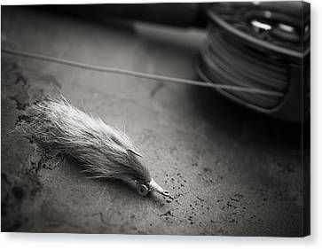 Rabbit Strip Fly Canvas Print by Chad Simcox