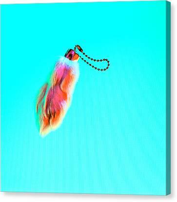 Rabbit's Foot Keychain Canvas Print