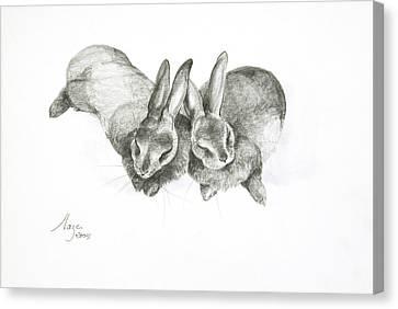 Rabbits Sleeping Canvas Print by Jeanne Maze