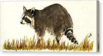 Raccoon In The Grass Canvas Print by Juan  Bosco