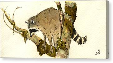 Raccoon On A Tree Canvas Print by Juan  Bosco
