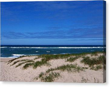 Race Point Beach Canvas Print by Catherine Gagne