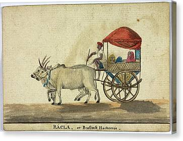 Racla Canvas Print