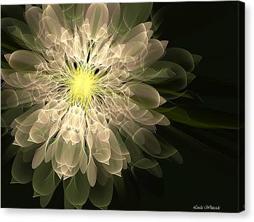 Radiance Canvas Print by Linda Whiteside