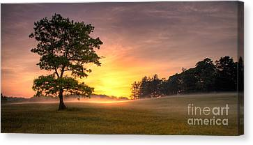 Radiant Gold Sunrise In The Blue Ridge Canvas Print