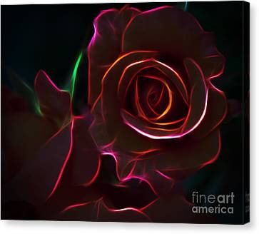 Radiant Rose  Canvas Print