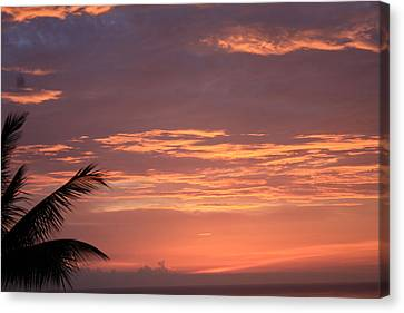 Radiant Sunset 2 Canvas Print by Karen Nicholson