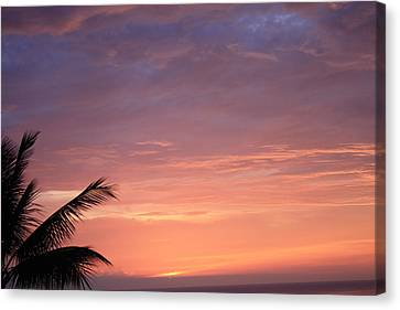 Radiant Sunset Canvas Print by Karen Nicholson