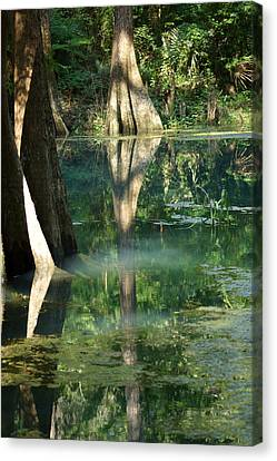 Radium Springs Creek In The Summertime Canvas Print by Kim Pate