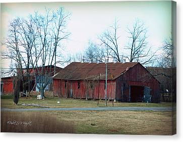 Ragged Red Shed I Canvas Print by Paulette B Wright