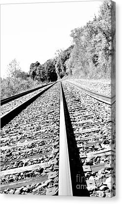 Canvas Print featuring the photograph Railroad Track by Joe  Ng
